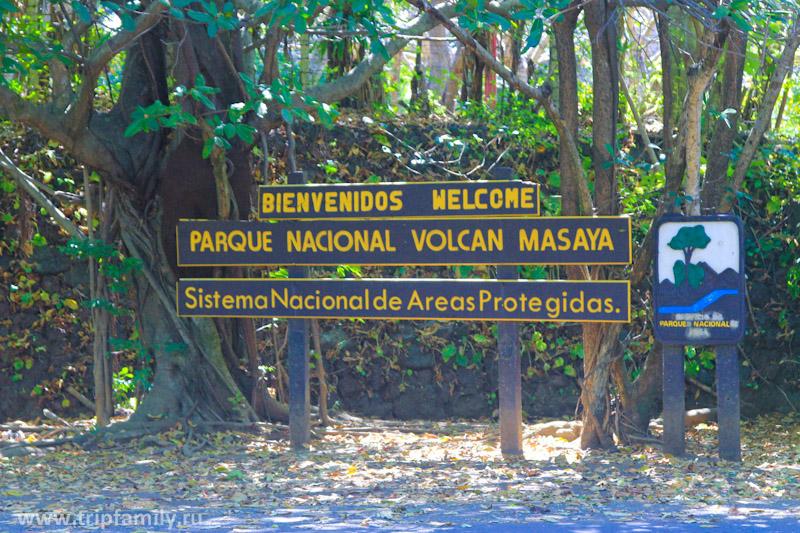 Добро пожаловать в национальный парк Масая